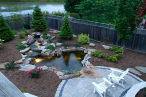 Summer Pond Maintenance
